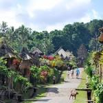 8 Pilihan Desa Wisata di Pulau Jawa dan Bali
